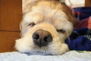今すぐ目を覚ます方法。眠気が吹っ飛ぶので集中して勉強や仕事に取り組めます。